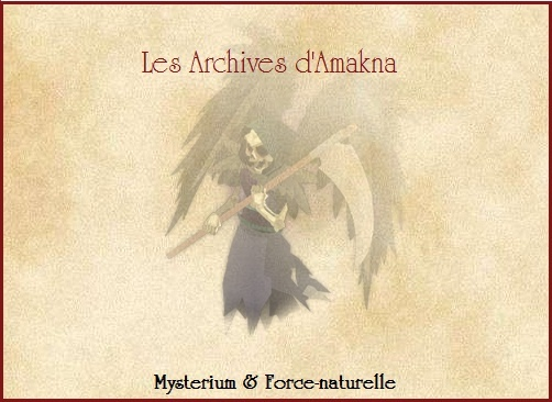 Les Archives d'Amakna - Chapter 2: La résurrection du Phenix! Se10