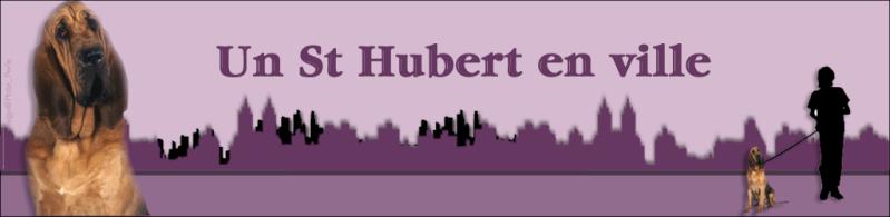 """Demande de partenariat """"Un St Hubert en ville"""" Header10"""