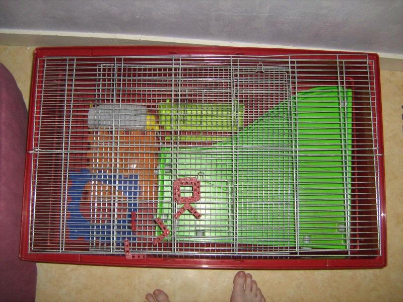 Vend cage Imac vieux modèle Img_0013