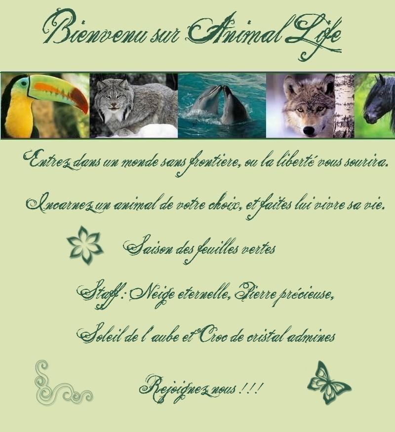 Animal life Acceui10