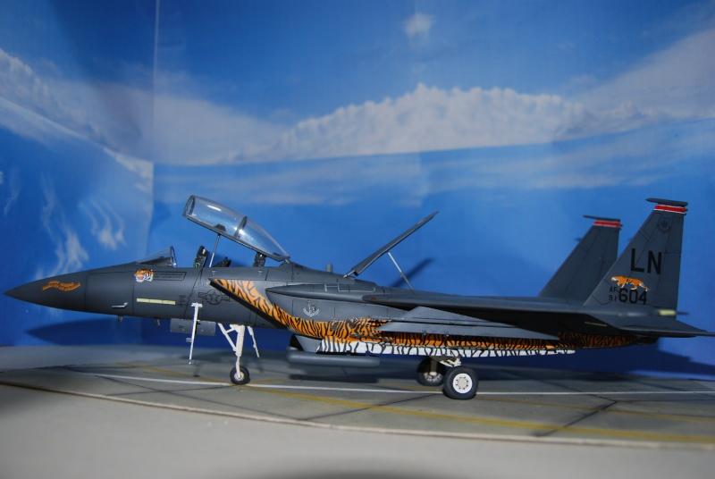 McDonnell Douglas F-15 E Strike Eagle Dsc_0313
