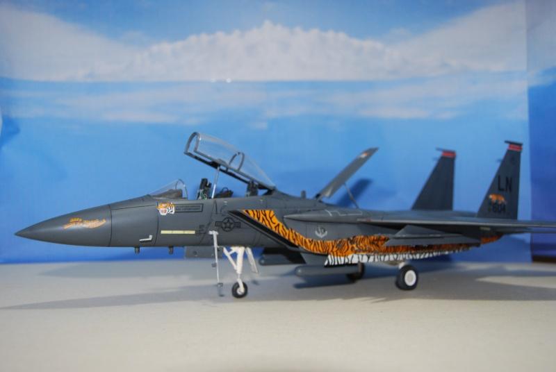 McDonnell Douglas F-15 E Strike Eagle Dsc_0314