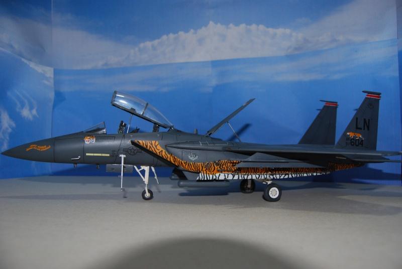 McDonnell Douglas F-15 E Strike Eagle Dsc_0315