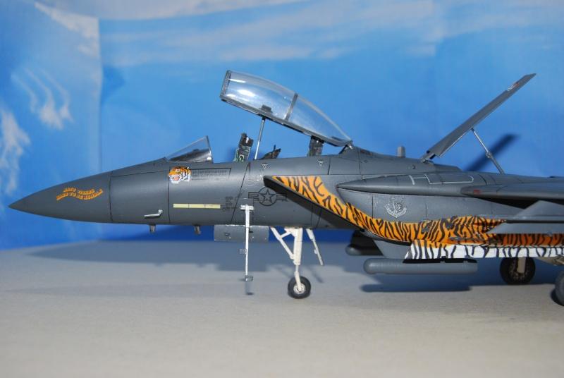 McDonnell Douglas F-15 E Strike Eagle Dsc_0316