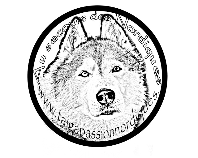 Vote : LOGO T-SHIRT TAIGA  -Cloture le 19 juin minuit-  Logo_210