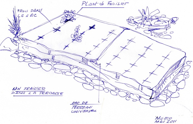 travaux au jardin - Page 2 Img12110