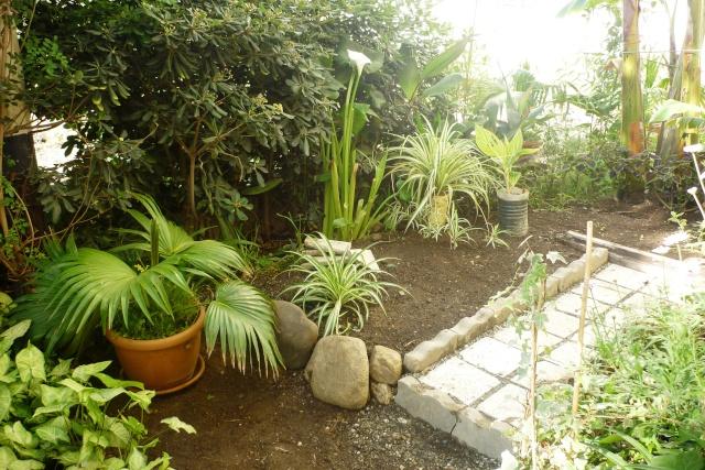 travaux au jardin - Page 2 P1020322