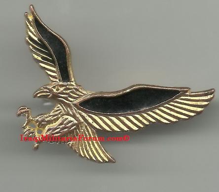 Possible Commandos Breast Badges 3_410