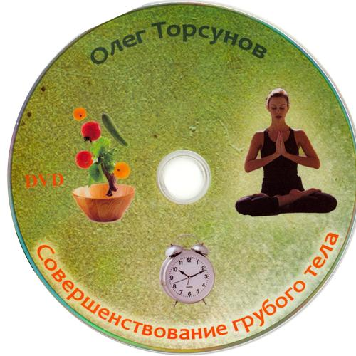 """Олег Торсунов """"Совершенствование грубого тела"""" 90411410"""