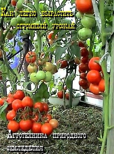 Агротехника природного земледелия.  94260710