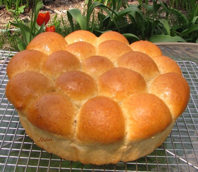 Pain aux oeufs, style challah _1_img44