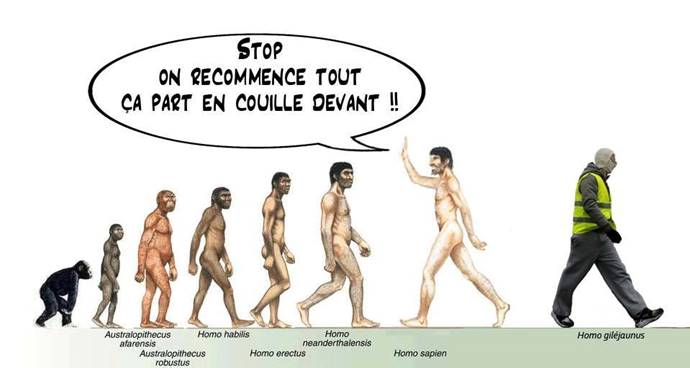 Images drôles - Page 37 Evolut10