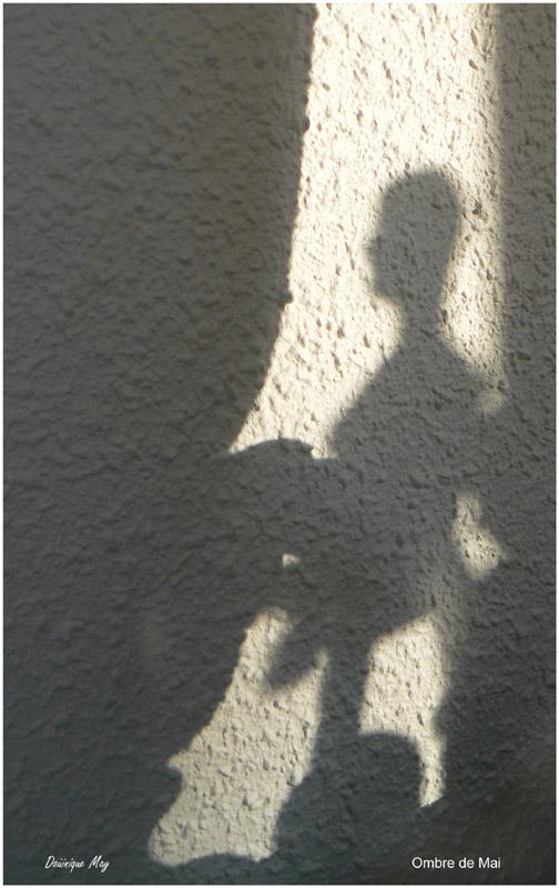 Concours photo du mois de mai 2011. Thème : En avril, ne te découvre pas d'un fil, en mai fait ce qu'il te plait... Ombre_10