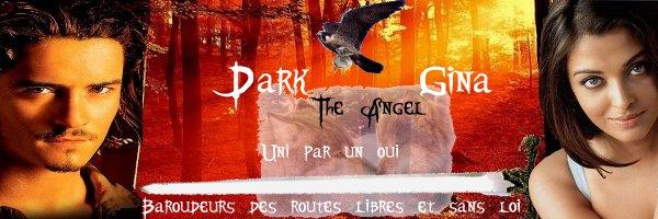 Un banniere commune animée pour Darkangel et GinaJo-Angel Essai110