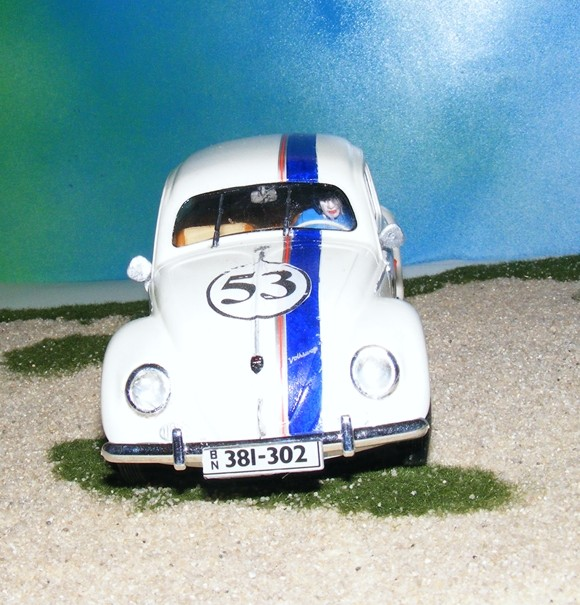 Ein Verrückter Käfer Dscf0018