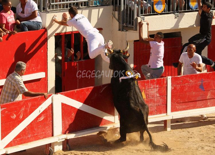 Grau du Roi  Souvenir  Olivier ARNAUD  19-06-2011 Concou13