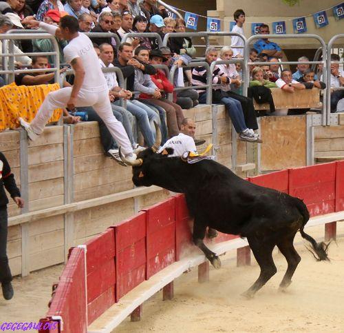 Finale du Trophée des Raseteurs    Vendargues   02-10-2010 Finale35