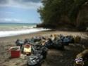 Nettoyage de plage - Page 3 Img_1110