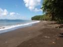 Nettoyage de plage P9130011