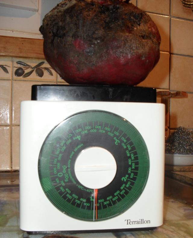 Légumes aux formes bizzares. 00310