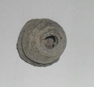 un cocon 10210