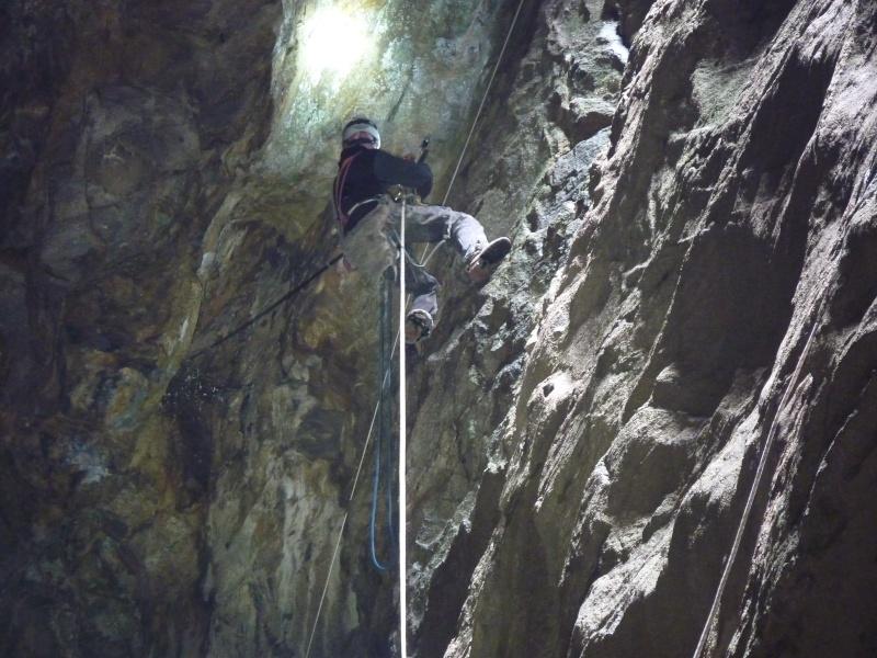 Suivi 2011 du Crave à bec rouge (Pyrrhocorax pyrrhocorax) en Bretagne P1000411