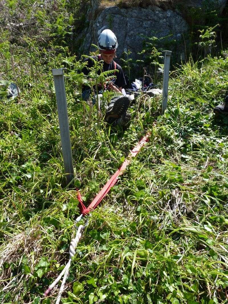 Suivi 2011 du Crave à bec rouge (Pyrrhocorax pyrrhocorax) en Bretagne P1000414