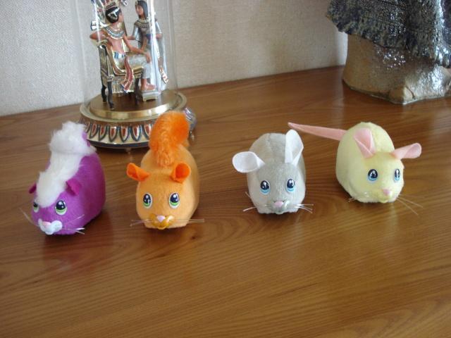 Les jouets de nos chats - Page 2 Coo_co10
