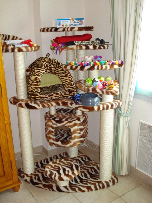 Les jouets de nos chats Jouets10