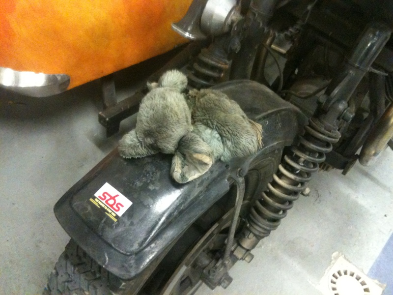 "Guzzi side ""rats""... tourner manége Img_0035"