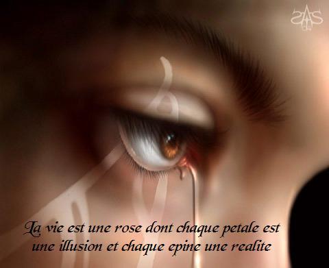 Proverbes en images Amour - Page 3 08021010