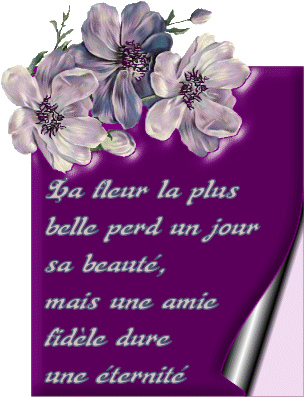 Proverbes en images Amour - Page 8 33182810
