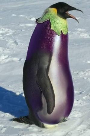 Images fruits et légumes en délires  - Page 2 Medium10