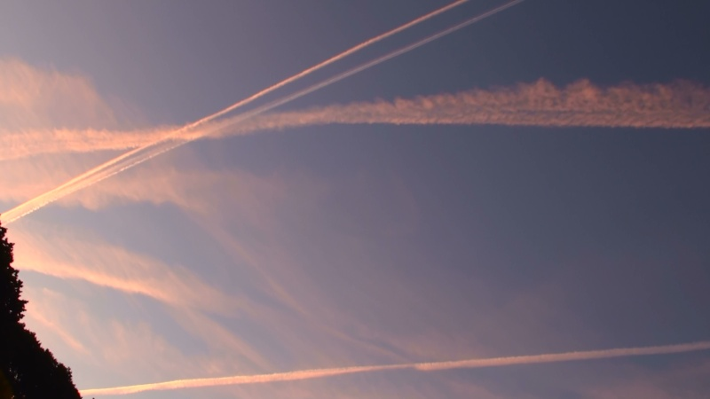 Contrail photos - Page 3 20100938