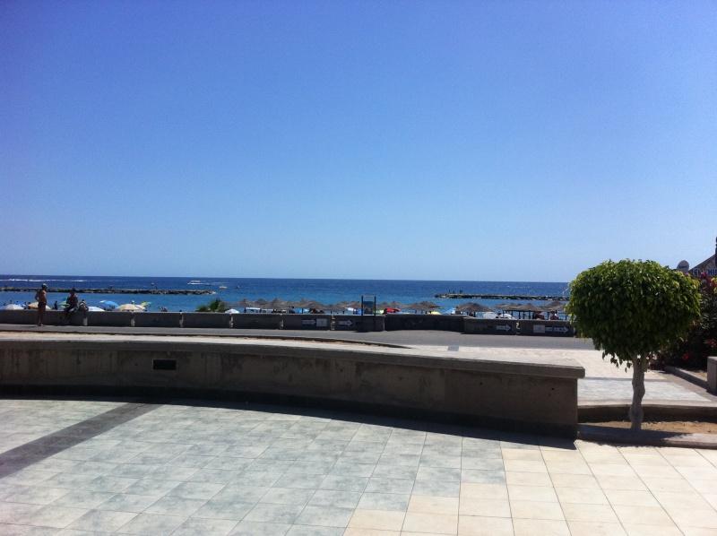 Canary Islands, Tenerife, Costa Adeje, Palace Hotel Teneri37