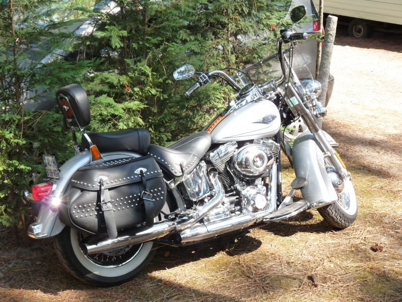 SOFTAIL HERITAGE ou DELUXE P1000412