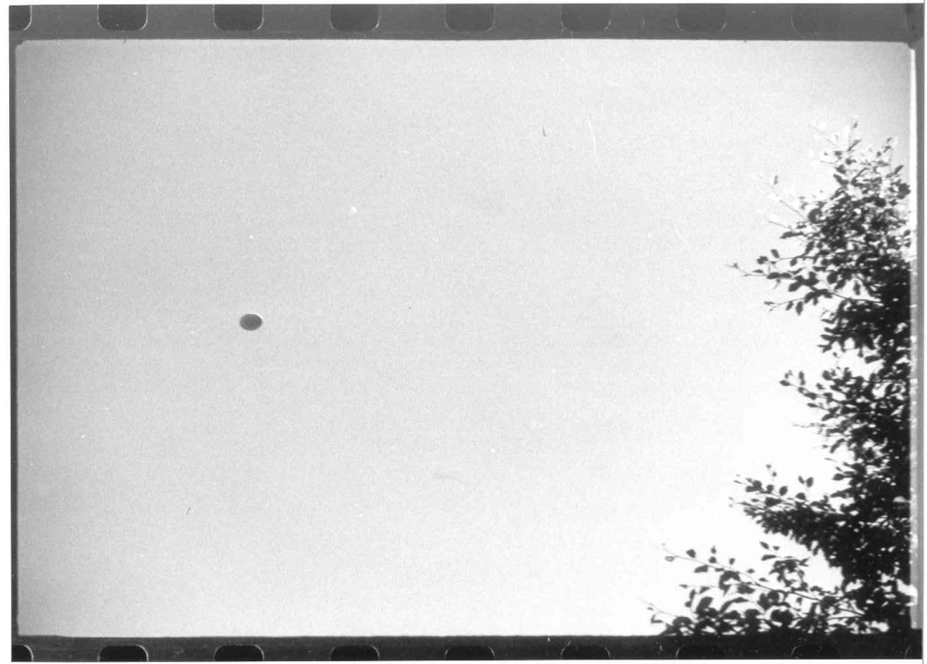 UFO Pictures Taken in Lac Chauvet, France 1952 Photo210