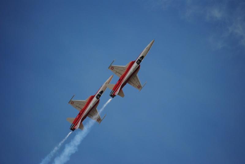 [Concours n°10]Les patrouilles aériennes Dsc_0917