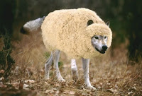 Gardez-vous des faux prophètes! Wolf-i10