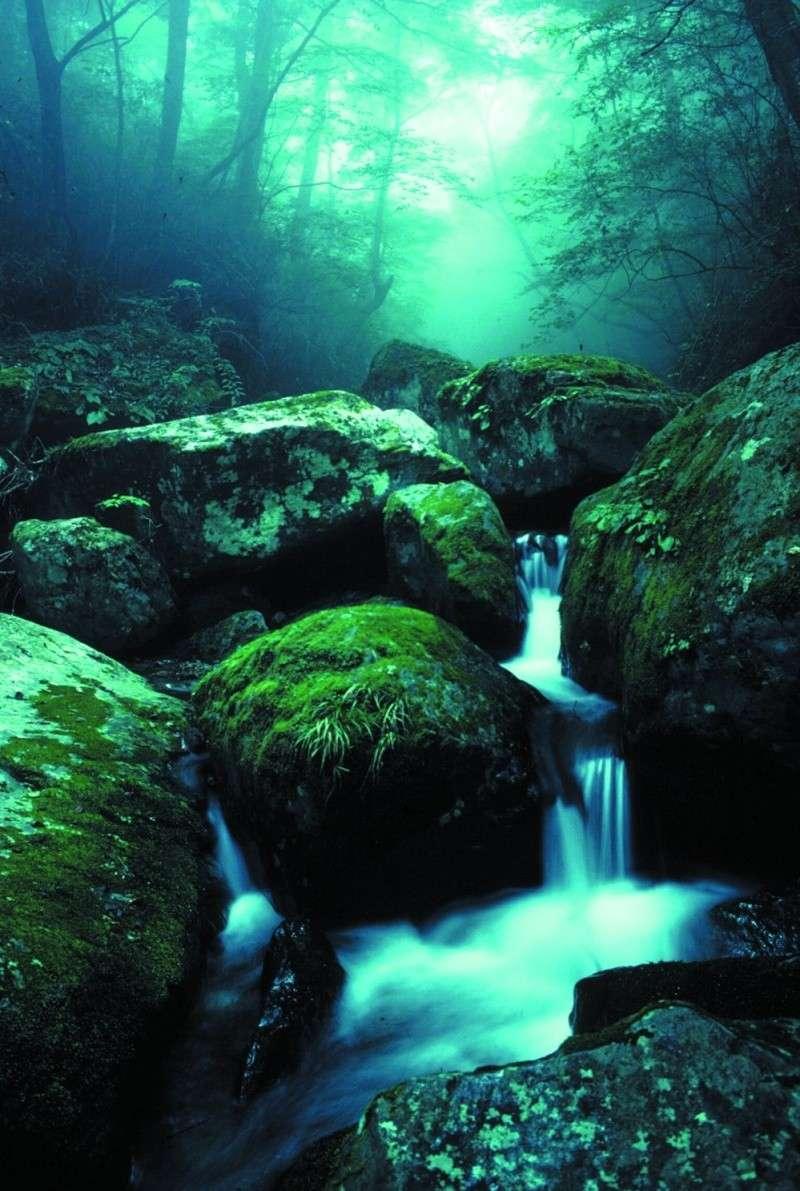 Soul Creek Mounta10