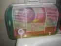 2 petites cage à vendre ( lyon) Imgp0210