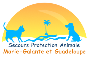 Secours Protection Animale