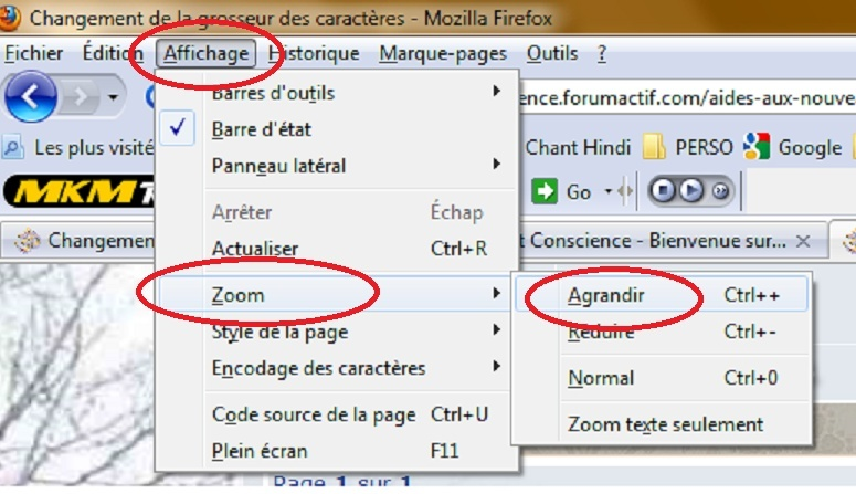 Comment agrandir l'apparence du Forum Mozill10