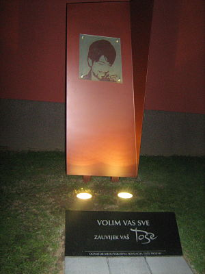 Spomen obilježje u znak sjećanja na Tošu Gfw-to10