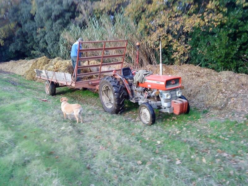 Le Brave petit Tracteur d'un collègue  Vierzo10