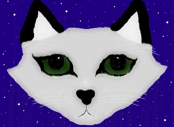Schimmer macht euch (häßliche) Katzenkopf-Avas Shimme12