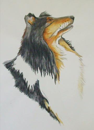 Un chien aux crayons pastels... Chien10
