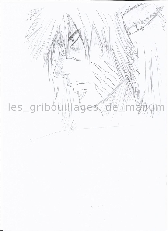 Les arts de Grisouille  ! Jakob210