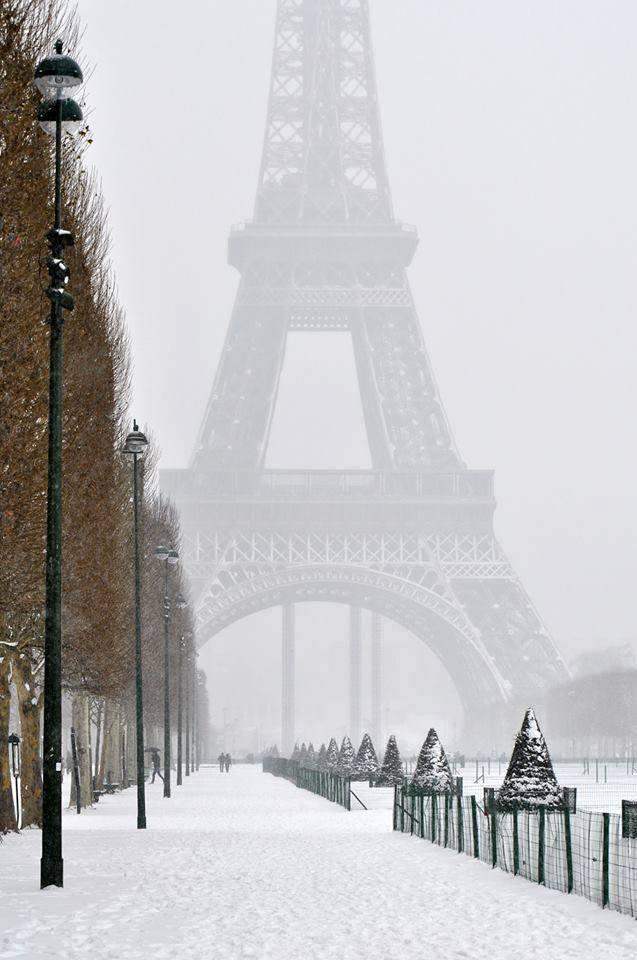 Pariz - Grad koji nikad ne spava - Page 3 17243