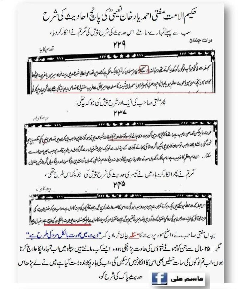 دیت کی جعلی فتوی فیکٹری پر منہاج القرآن کی فتح کا جھنڈا - Page 2 13_d10